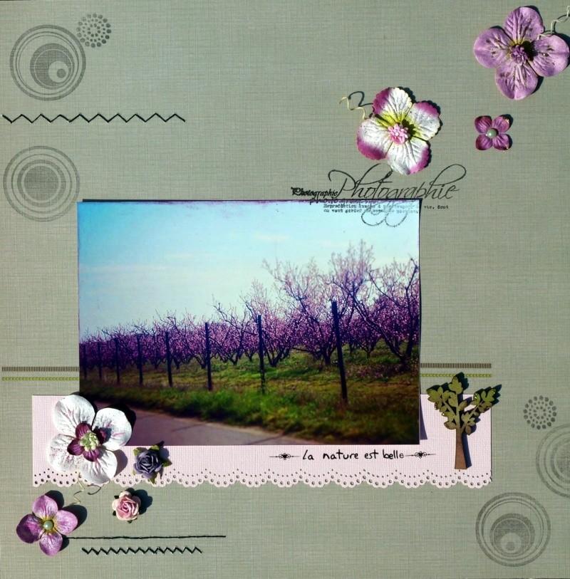 http://i19.servimg.com/u/f19/09/02/00/60/p1013414.jpg