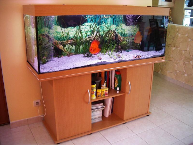 aquarium rio 400 litres juwel. Black Bedroom Furniture Sets. Home Design Ideas