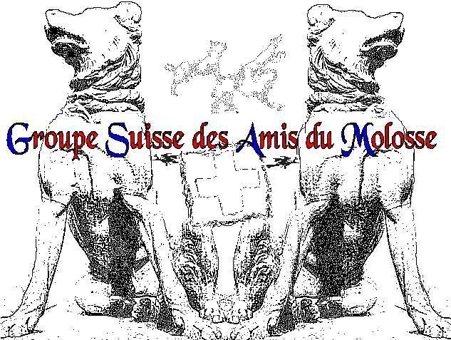 Groupe Suisse des Amis du Molosse