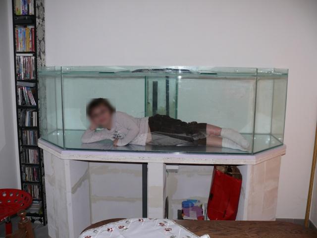 D cor aquarium siporex for Meuble en siporex
