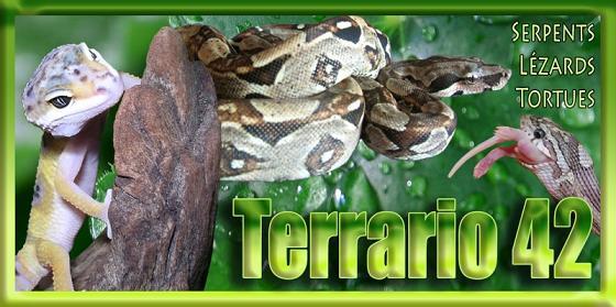 Terrario 42 Loire