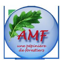les discussions de l'AMF