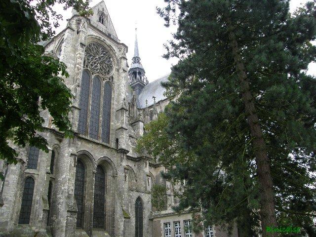 p8301411 dans Picardie