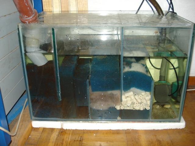 Filtre externe aquarium pas cher 28 images filtre for Filtre exterieur pour aquarium