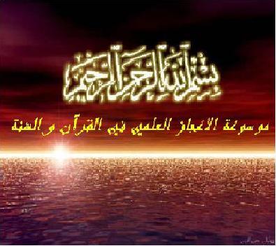 برنامج الاعجاز العلمي القرآن والسنة 16051610.jpg