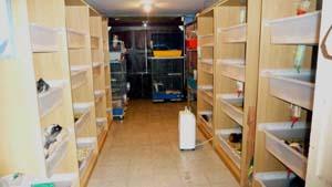 Habitat et accessoires for Accessoire furet fait maison