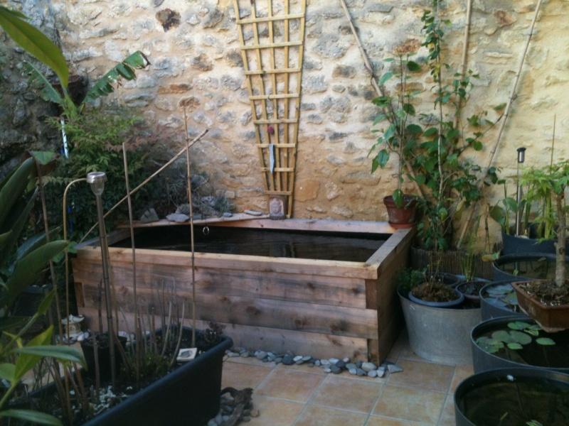 Bassin carpe koi hors sol id es de conception sont int ressants votre d cor - Amenagement bassin hors sol paris ...