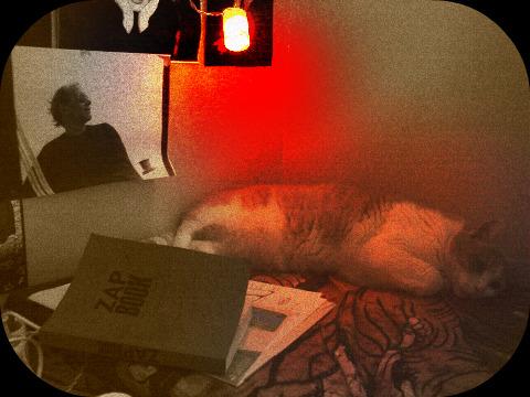 Zap Book dans Le jardin des souvenirs 00910