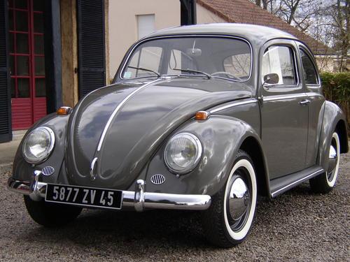 coccinelle volkswagen 1964