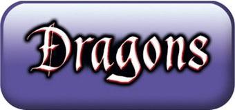 playmobil dragon fanny et olivier