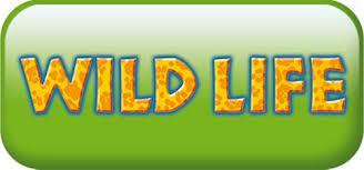 playmobil wild life fanny et olivier