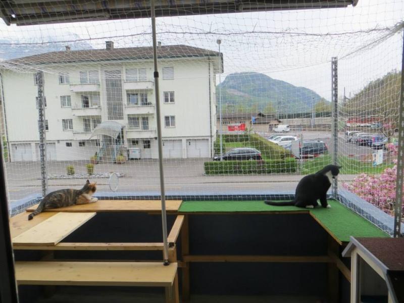balkon als katzenparadies chaoskatzen. Black Bedroom Furniture Sets. Home Design Ideas