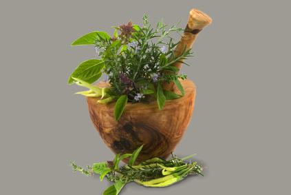des plantes connaitre elles soignent le blog de reikilorient. Black Bedroom Furniture Sets. Home Design Ideas
