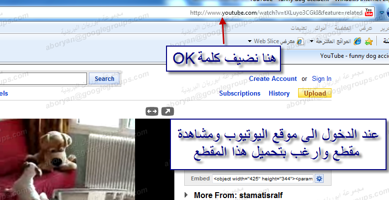 how to download transcript from youtube