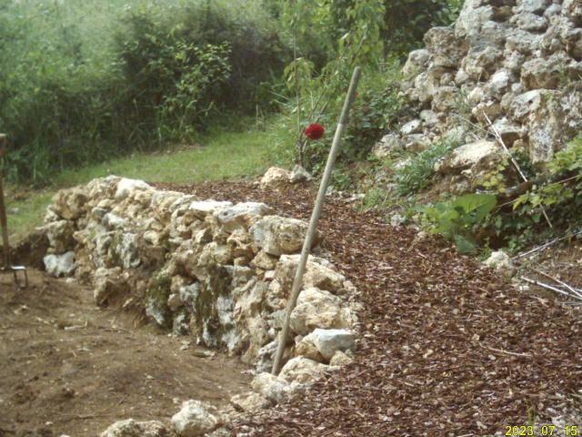 Cr ation d 39 un potager en espalier for Creation jardin potager