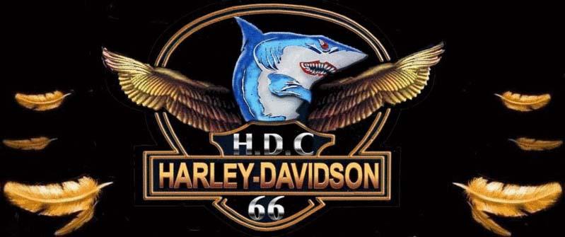 HDC 66