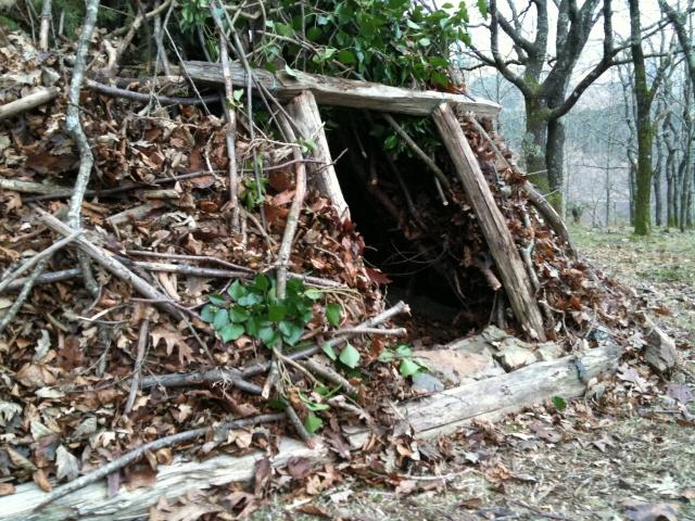 Abri hutte de camp de base fa on tchoum sib rien - Comment faire crever un arbre sans le couper ...