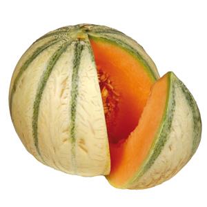 La fin d 39 un mythe - Culture du melon charentais ...