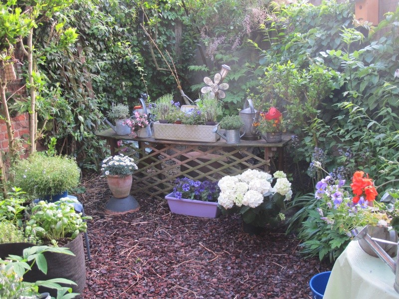 mon jardin au printemps 2015
