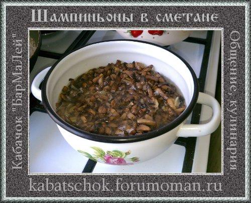 http://i19.servimg.com/u/f19/15/99/40/99/5e10.jpg
