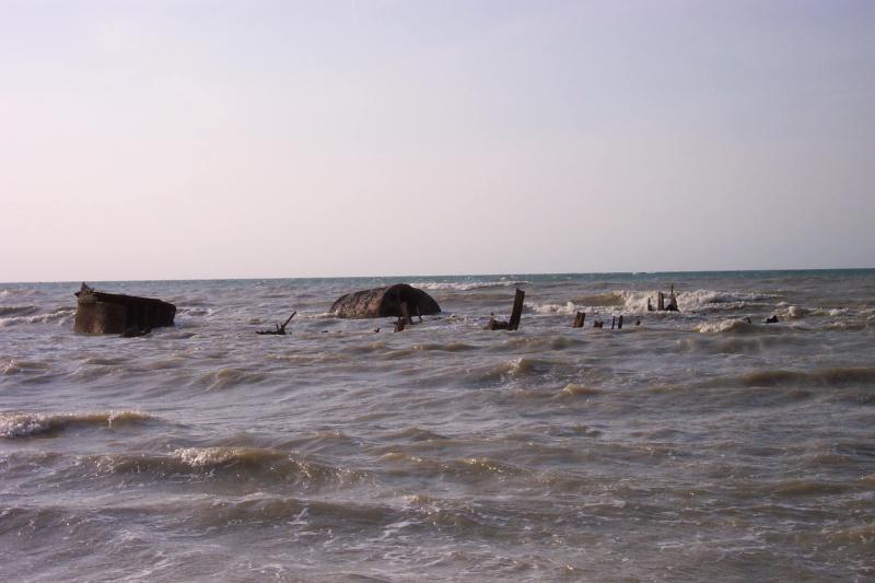 cote pêche forum