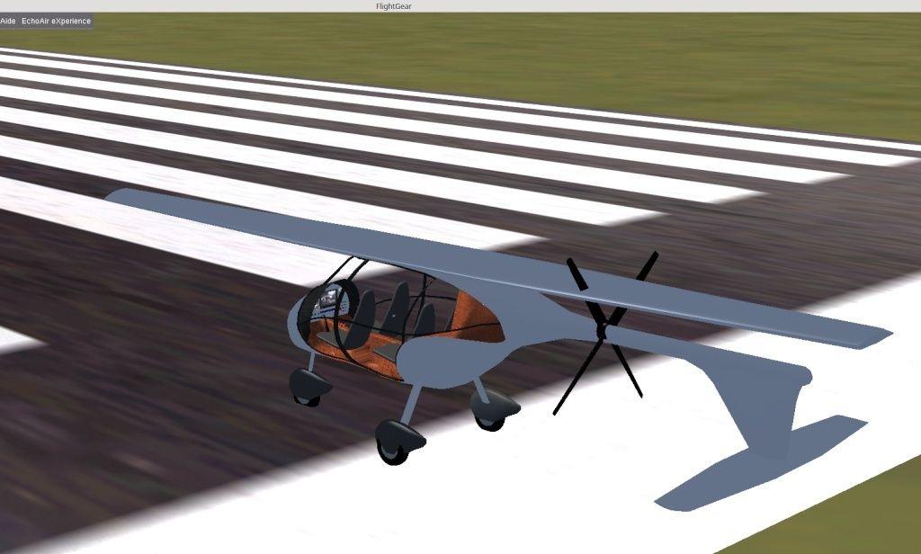 wings-10.jpg