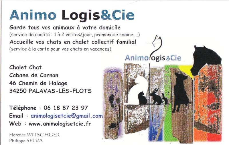 animoi logis cie garde animaux domicile ou collectif tr s s rieux. Black Bedroom Furniture Sets. Home Design Ideas
