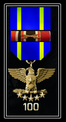 NiN-SIR Medal