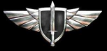 "NiN Gaming Armed Forces Air Corps Air-Wings Pin (Awarded to NiN WOWP ""Ninjas Elite Clan Division of World of Warplanes"" Members Only)"