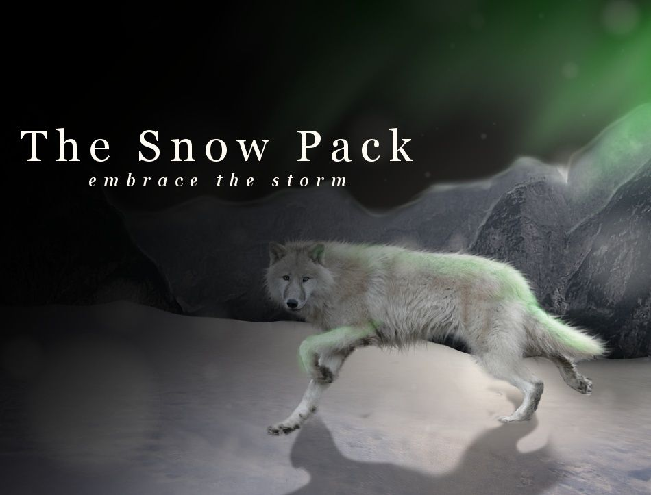 The Snow Pack