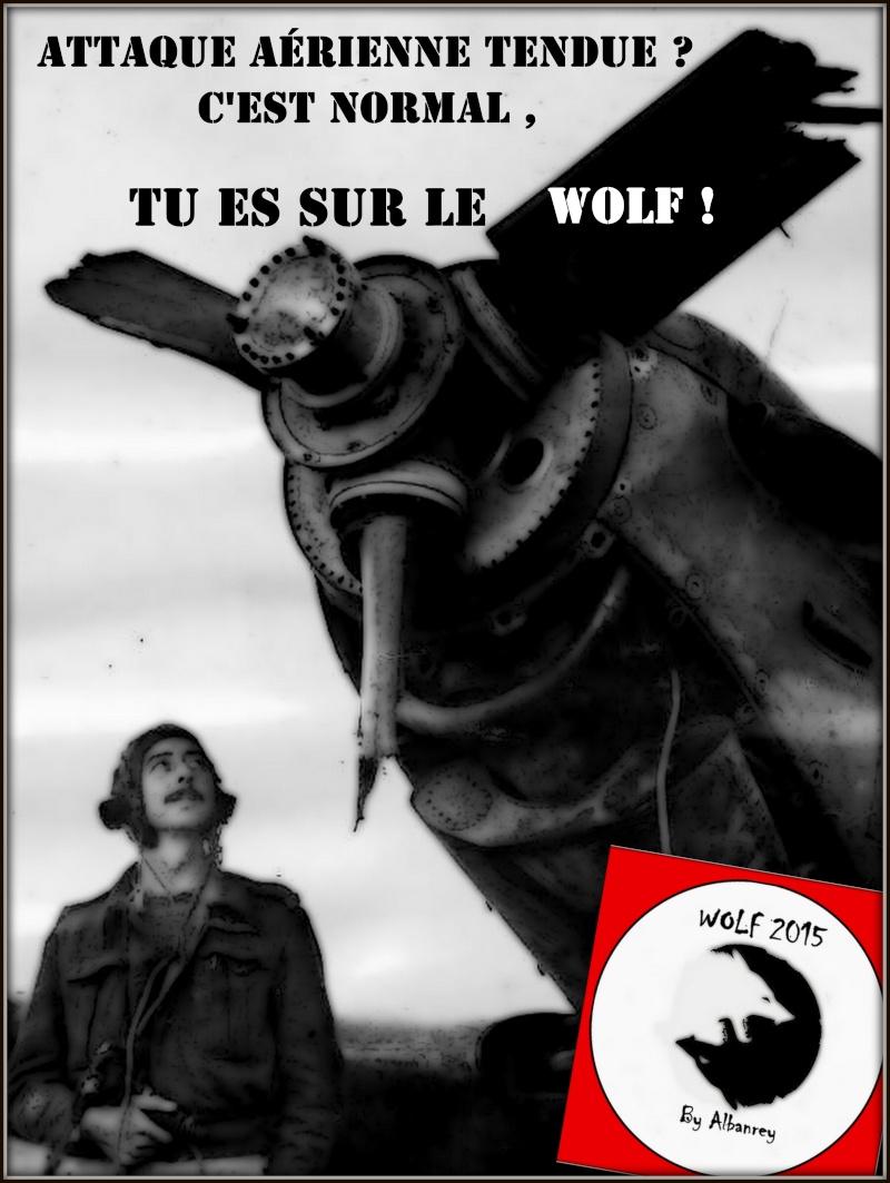 http://i19.servimg.com/u/f19/17/84/82/31/1-wolf25.jpg