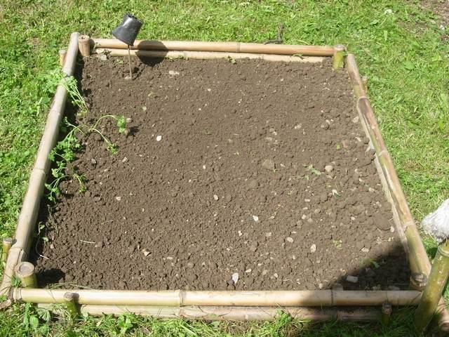 Agencement mini jardin for Agencement jardin