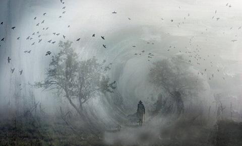 enquête dans le brouillard