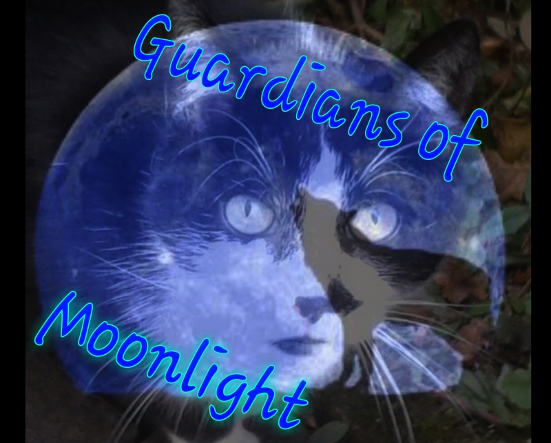 The guardians of moonlight