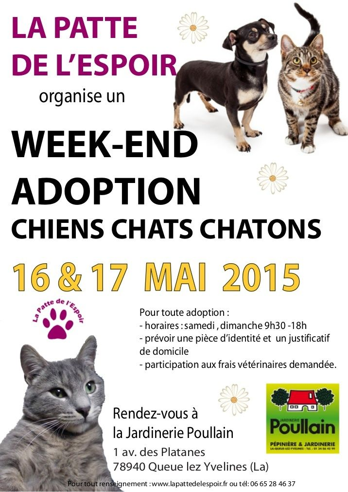 Week end adoptions boutique les 16 et 17 mai 2015 for Week end yvelines