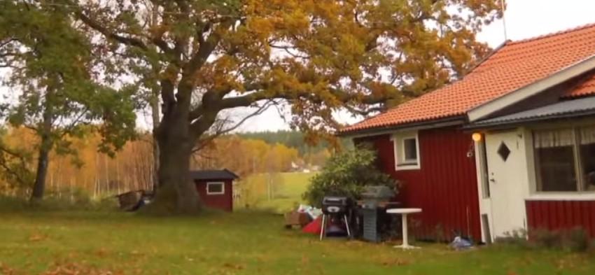 Open Dialogue - Maison finlandaise - Neptune