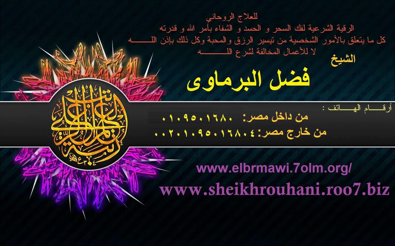 الشيخ فضل البرماوى 01095016804