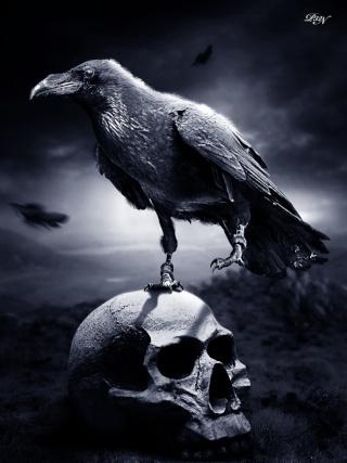Black Ravens