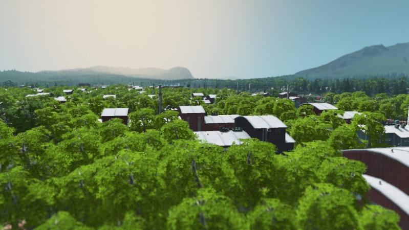 cities11.jpg
