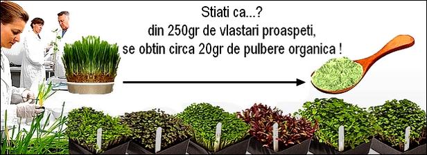 http://i19.servimg.com/u/f19/19/17/38/41/origin12.jpg