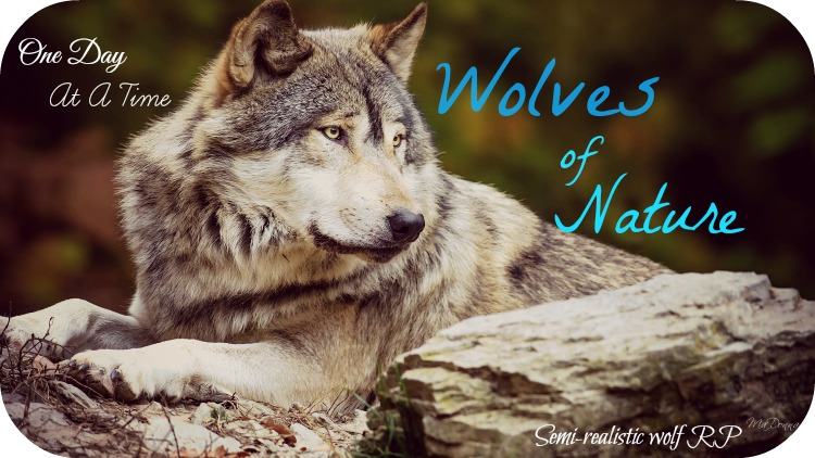 Wolves of Nature